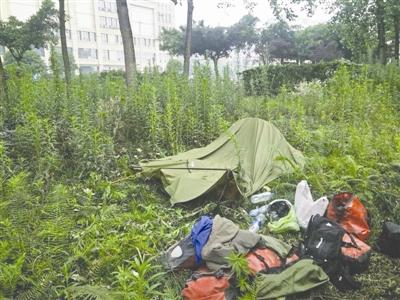camping in chengdu